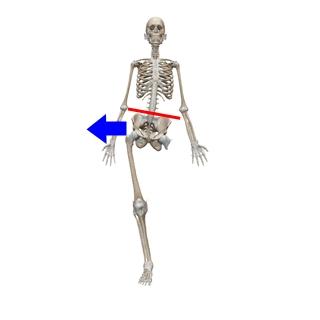 片側立位姿勢